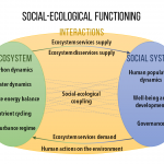Online Survey v2.0: Enhanced Essential Variables to characterize the functioning of social-ecological systems
